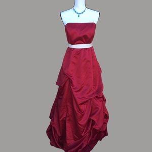 Plus Size David's Bridal formal red dress